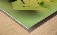 libellule Wood print
