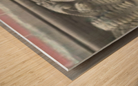 20015 .ART PIXS 115 Wood print