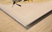 FAA Kreol Nippon 11 Wood print