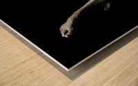 Legs in Fishnet Stockings 1 Wood print