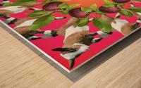 APPLE PICKIN - Wood print