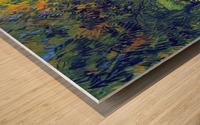 Allee in the Park by Van Gogh Wood print