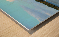 Swim or Not Wood print