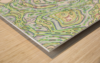 CapPY X Wood print