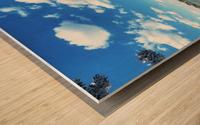 Tidal Basin Cherry Blossoms Wood print