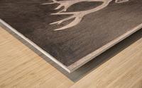 Stag_DKS Wood print
