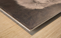 Lion_DKS Wood print