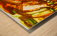 Exaltation Acoustic Version Wood print