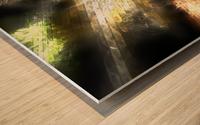 Path to nowhere Wood print