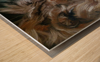 Leos. Tenderness. Wood print