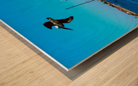 2003_1228San Augustin0055 Wood print