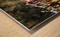 Aiken Steeplechase 4998 Wood print