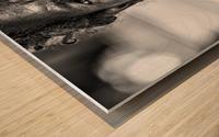 Temet Nosce Wood print