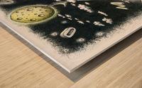 Somnambulist Wood print