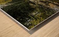 Rocky Mountain Stream Wood print