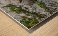 Moose On Golden Pond Wood print