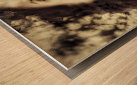 Maiden Wood print