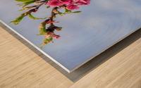 Tree XIII - Cherry tree Wood print