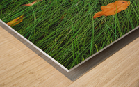 green grass field background with dry brown leaves Wood print