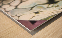 fractral Wood print