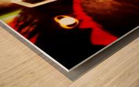 Spacetime Phone Box RLM Wood print