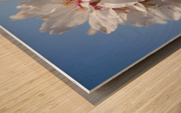 Flower Mix 09 Wood print