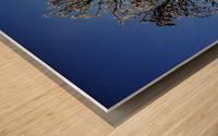 Eblouissant Wood print