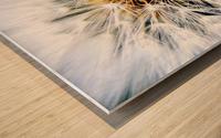 Dandelion Fluff Wood print