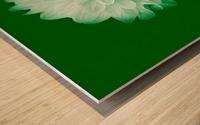 Dahlia on Green Wood print