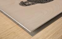 Gyrfalcon Wood print