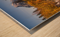 Vermilion Lakes Pond IMG_7045  Wood print