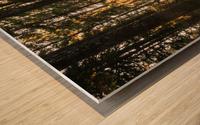Wayfinder Wood print