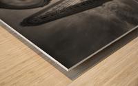 dv00002 Impression sur bois