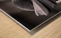 La corneille Wood print