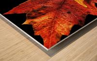 Fall Maple Leaves 2 Wood print