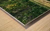 Monet style 2 Wood print