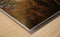 Lumiere automnale Wood print