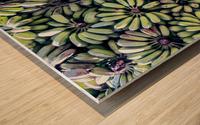 Havana III Wood print