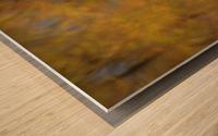 Autumnal swirls reflections 2 Wood print