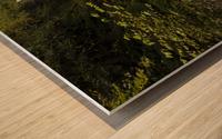 Water-Break-its-Neck landscape Wood print