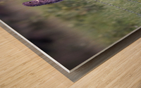 0077 - Great Grey Owl Fence Line Hunter Wood print