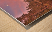Azalea Sunset Wood print