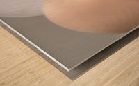 InnerSpace II Wood print