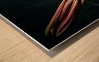 Floraison 1 Wood print