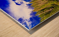 DSC00906 Wood print