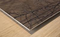 Wesley Allen Shaw 02102 Wood print