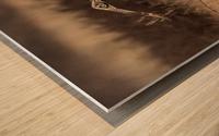 Wesley Allen Shaw 02245 Wood print