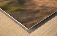 Wesley Allen Shaw 08787 Wood print