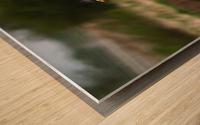 Wesley Allen Shaw 04650 Wood print