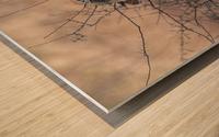 Wesley Allen Shaw 09307 Wood print